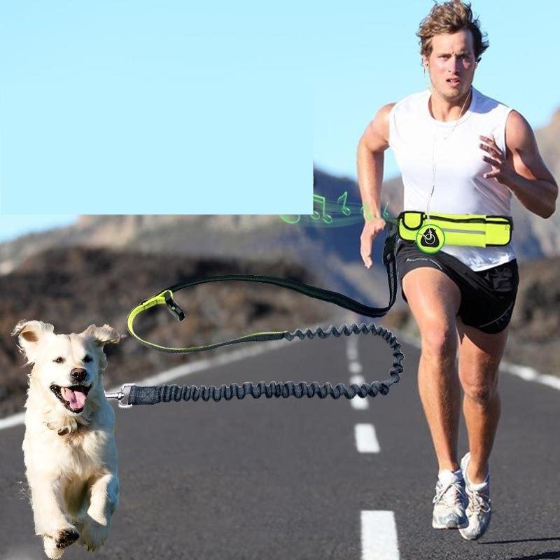 Hands-Free Dog Running Leash with Waist Pocket Adjustable Belt Shock Absorbing Bungee